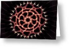 Red Wheel Greeting Card by Michael Jordan