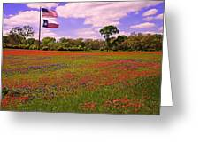 Red White And Beautiful Greeting Card