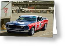 Red White And Blue Mustang Greeting Card