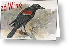 Red Wing Greeting Card