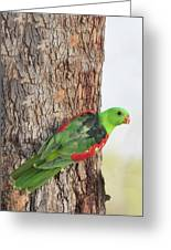 Red-winged Parrot Greeting Card