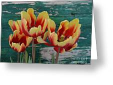 Red Yellow Tulips Greeting Card