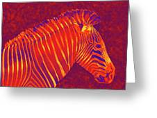 Red Zebra Greeting Card