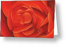 Redrose14-1 Greeting Card