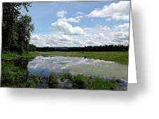 Redtail Lake At Steigerwald Natinal Wildlife Refuge Greeting Card by Lizbeth Bostrom