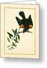 Redwing Blackbird Vertical Greeting Card