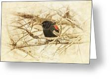 Redwing In The Wind Greeting Card