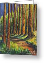 Jedediah Smith Redwoods State Park Greeting Card