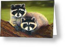 Redwood Rascals Greeting Card