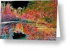 Reedy Creek Nc 3 Greeting Card