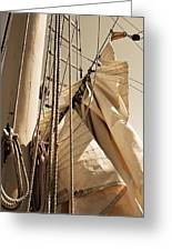 Reefing The Mainsail In Sepia Greeting Card