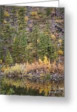 Reflect Autumn Greeting Card