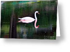Reflect Yourself Greeting Card