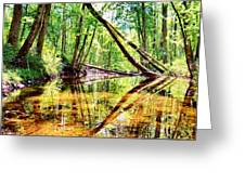 Reflected Forests Greeting Card