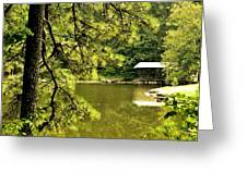 Reflecting On The Beauty Of The Woodlands Greeting Card
