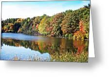 Reflecting Trees Greeting Card