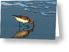 Reflection At Sunset Greeting Card