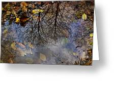 Reflection In A Puddle Greeting Card