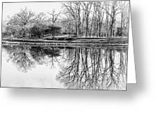 Reflection In Black And White Greeting Card