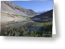 Reflection In Borith Lake Greeting Card