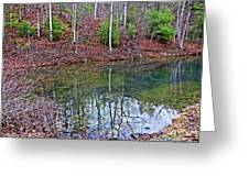 Reflection In The Lake Greeting Card