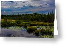 Reflection In The Swamp Greeting Card