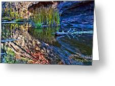 Reflection In The Water Greeting Card