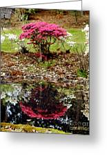 Reflection Greeting Card