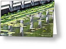 Reflection On The Pond Greeting Card