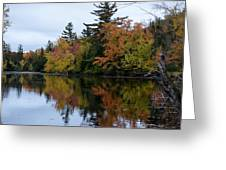 Reflection On The Raquette River Greeting Card