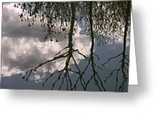 Reflection On Trees Greeting Card