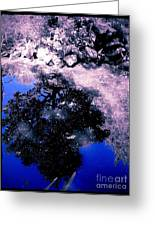 Reflection Pool Greeting Card by Garren Zanker