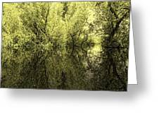 Reflections 7 Greeting Card