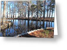 Reflections And Shadows Greeting Card by Valia Bradshaw