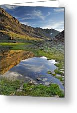 Reflections At The Mountain Lake Greeting Card