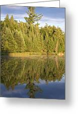 Reflections - Canisbay Lake - Detail Greeting Card