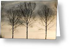 Reflections In Grey II Greeting Card