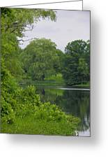 Reflections In Spring Green Greeting Card