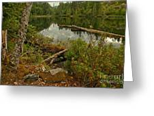 Reflections In Starvation Lake Greeting Card
