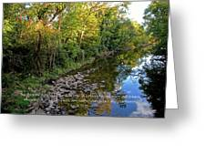 Reflections In The Stream Greeting Card