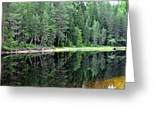 Reflections In Wtare Greeting Card