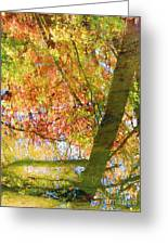 Reflections Of A Colorful Fall 001 Greeting Card