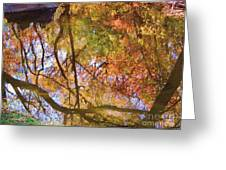 Reflections Of A Colorful Fall 002 Greeting Card