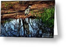 Reflections Of A Heron Greeting Card