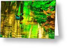 Reflections Of A Mallard Duck Greeting Card