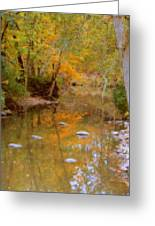Reflections Of An Autumn Day Greeting Card