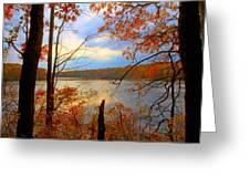 Reflections Of Autum Greeting Card