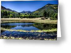 Reflections Of Blue  Greeting Card
