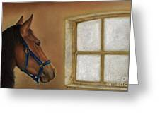 Reflections Of Days Gone By Greeting Card