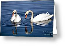 Reflections Of Elegance Greeting Card